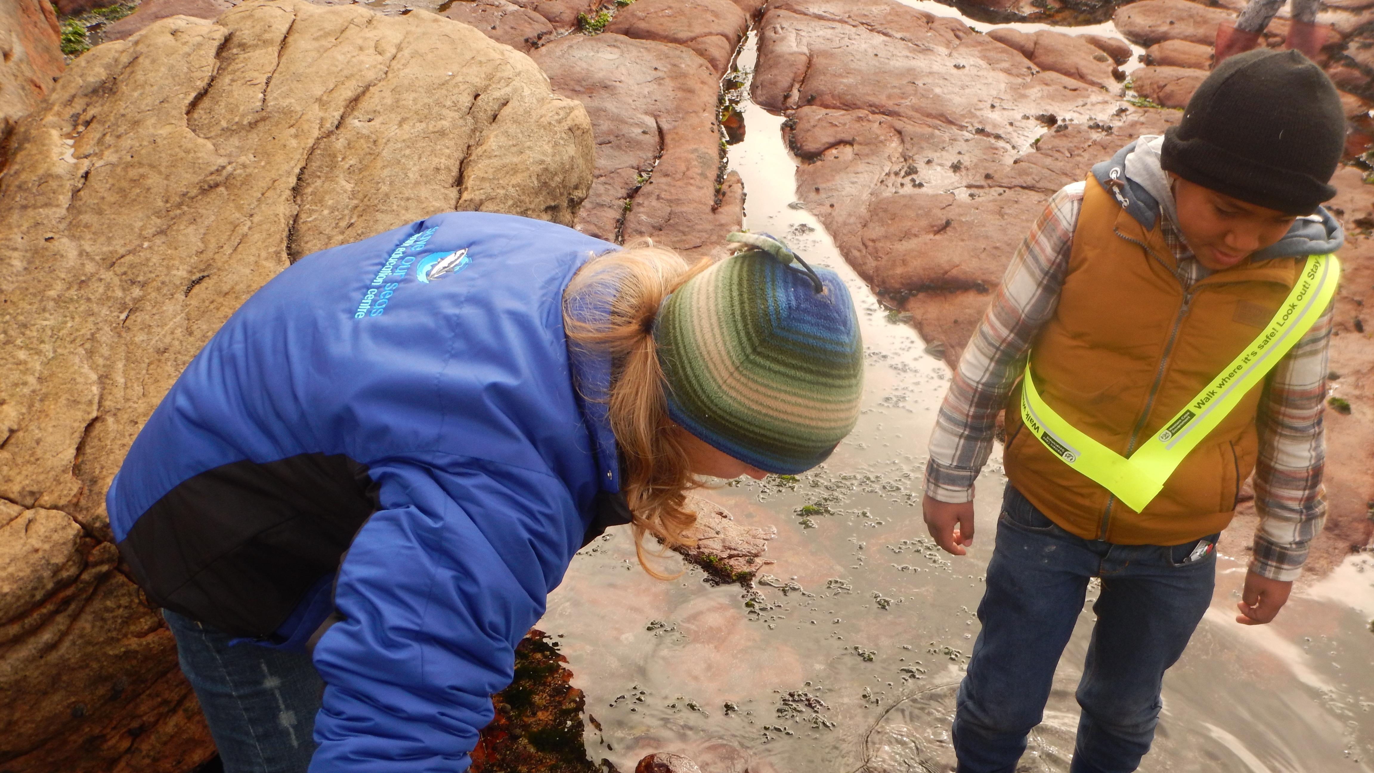 Exploring Dalebrook rock pools