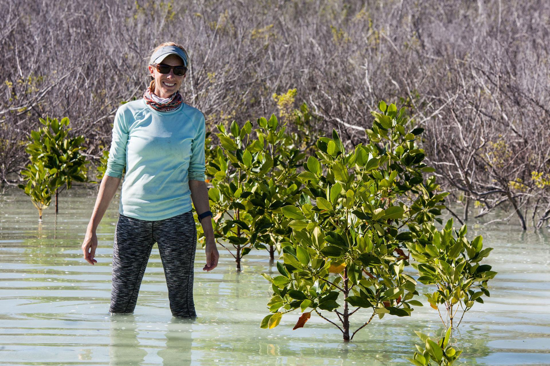ClareDaly mangroves St Joseph Atoll
