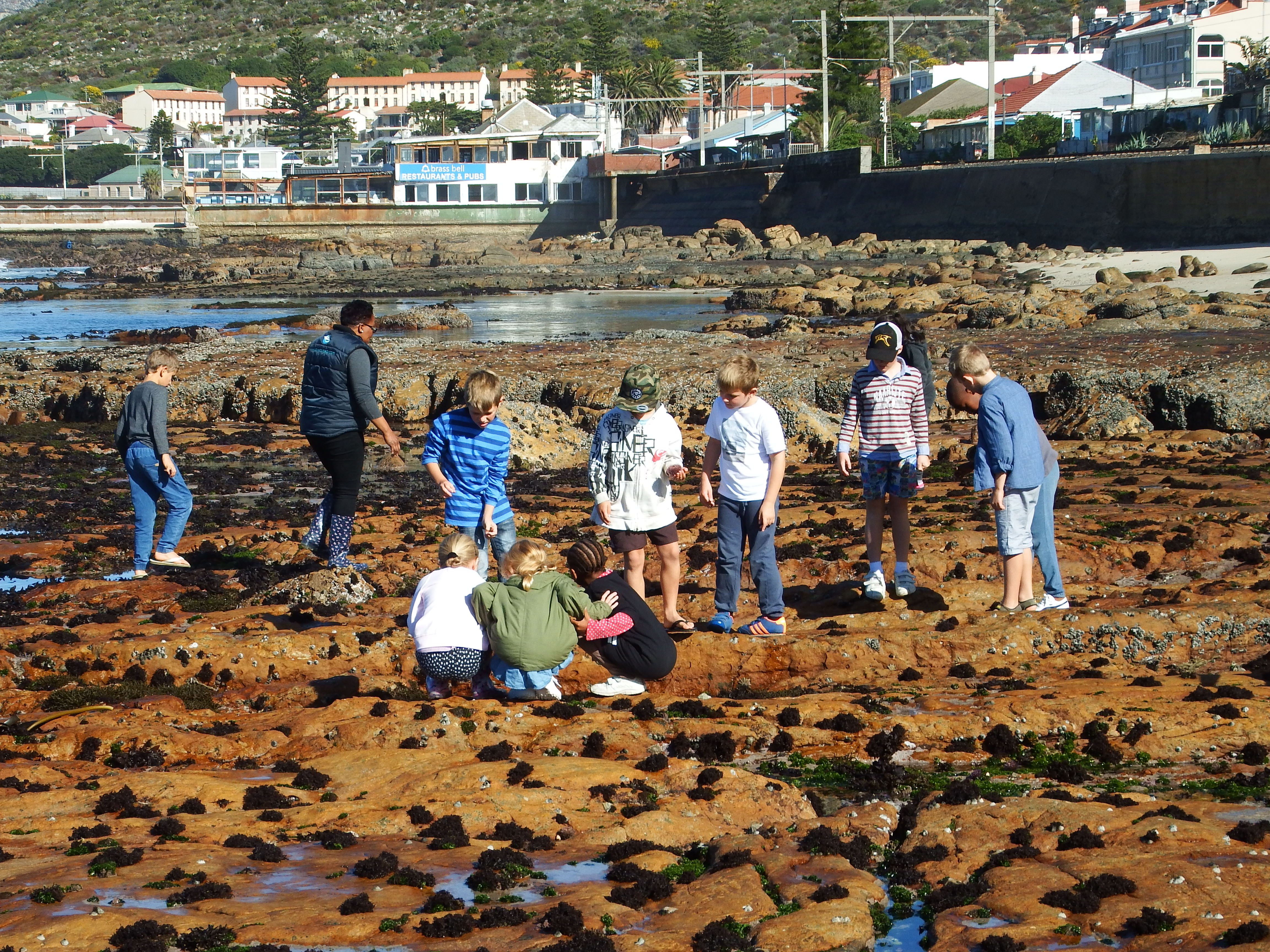 A beautiful day to spend low tide at Dalebrook Marine Sanctuary Zone