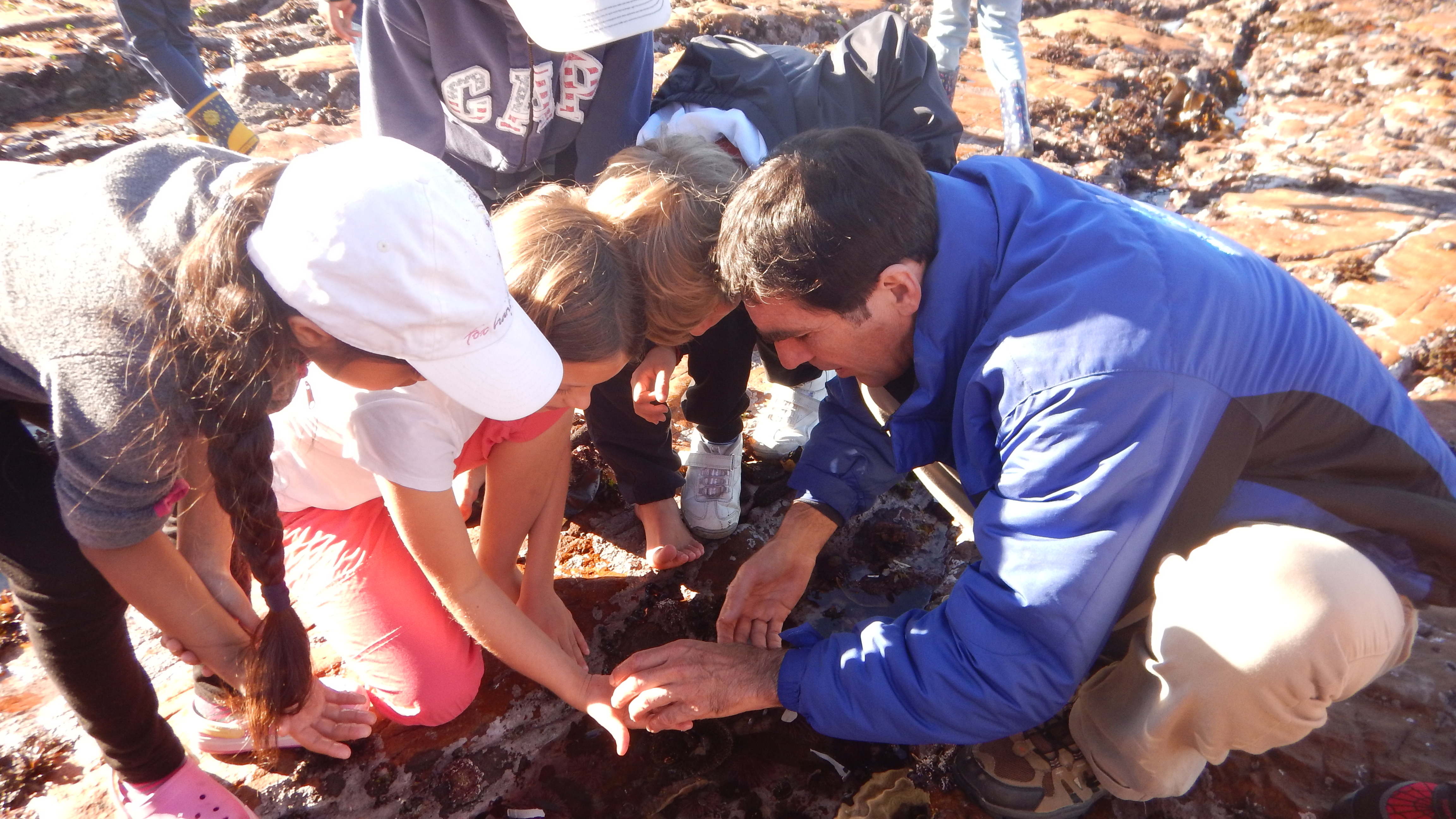 Educator Paul Millar helps children to explore a rock pool