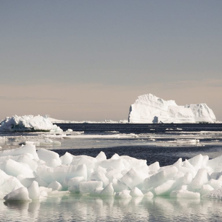 Drifting ice floats and large icebergs were abundant in the area where we were fishing Though they made the scenery very photographic, the ice posed a constant threat to our long-lines. © Photo by Julius Nielsen