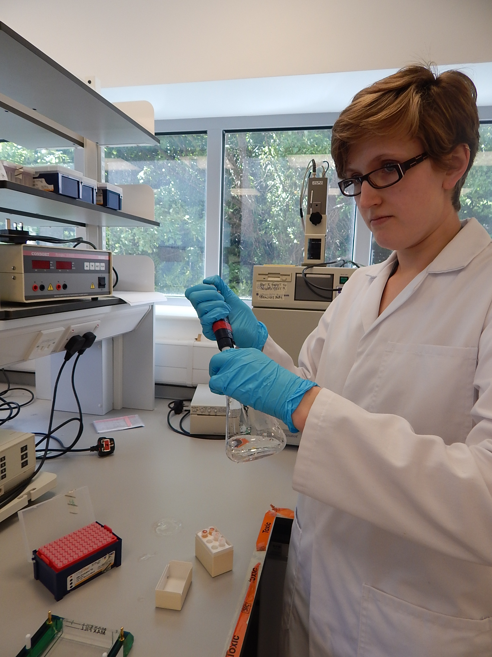 Preparing a gel to check DNA quality