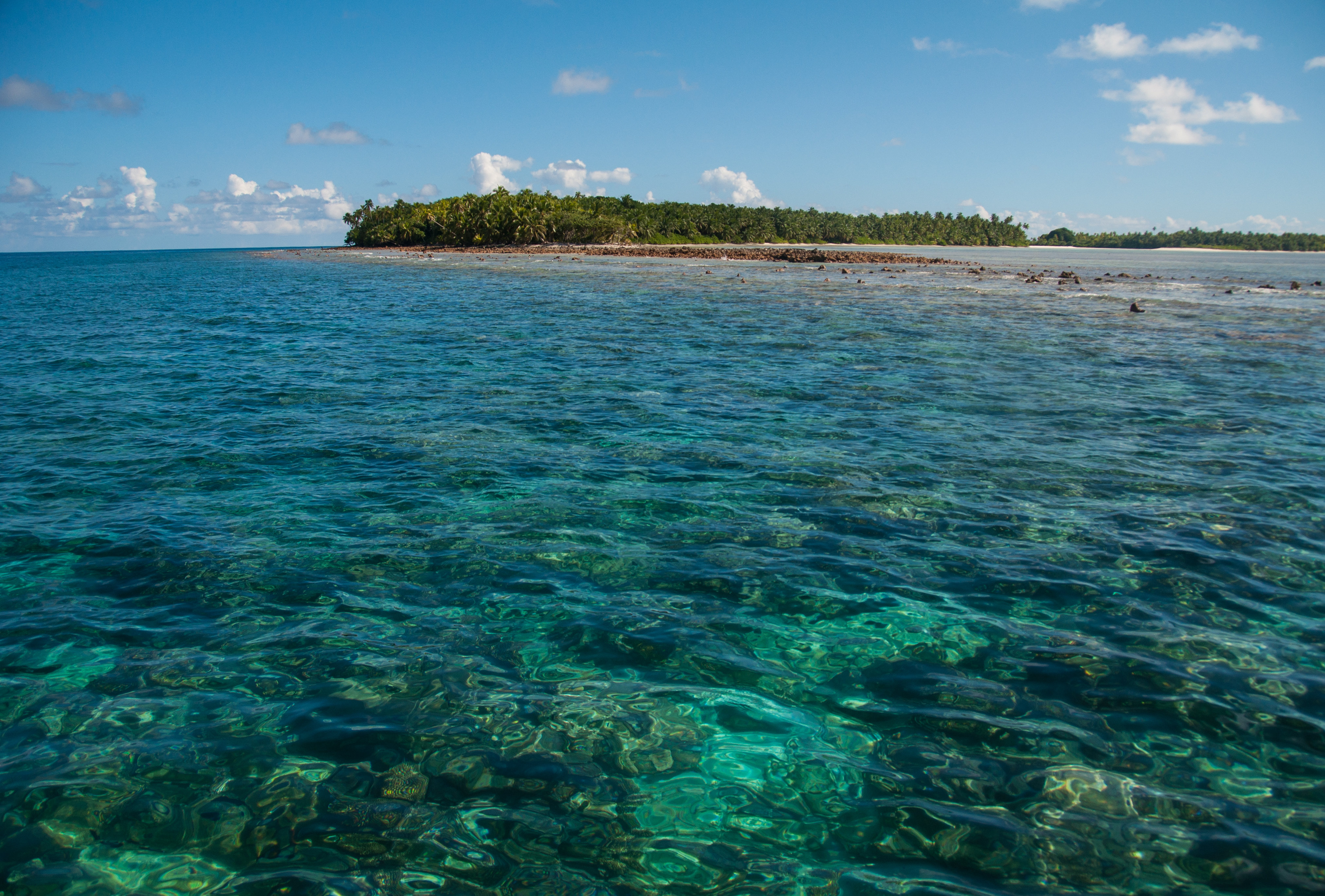 One third of the global ocean's no-take area is contained within the Chagos Marine Reserve.