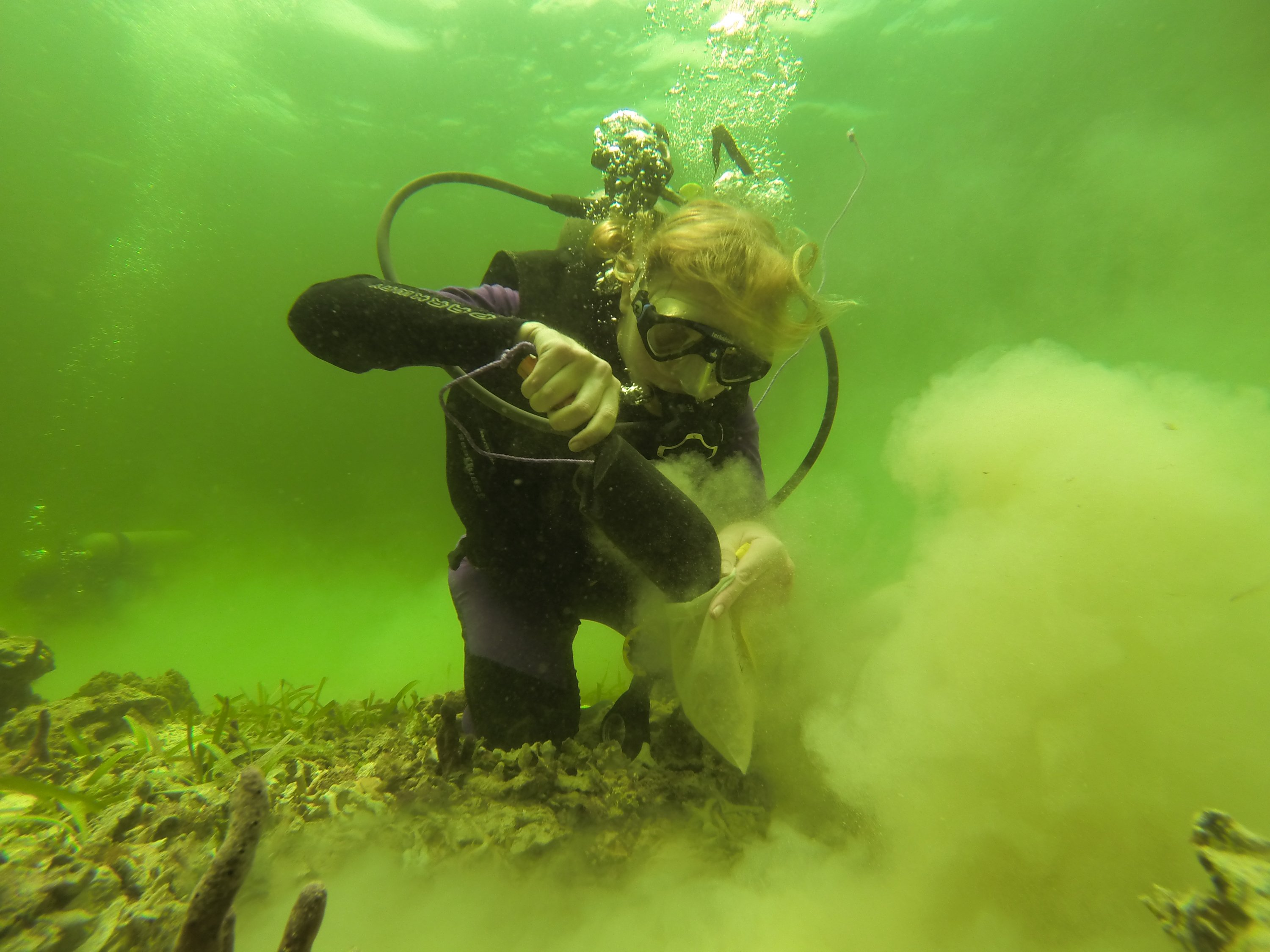 Collecting bulk samples of sediment while diving on a modern reef in Bocas del Toro, Panama.
