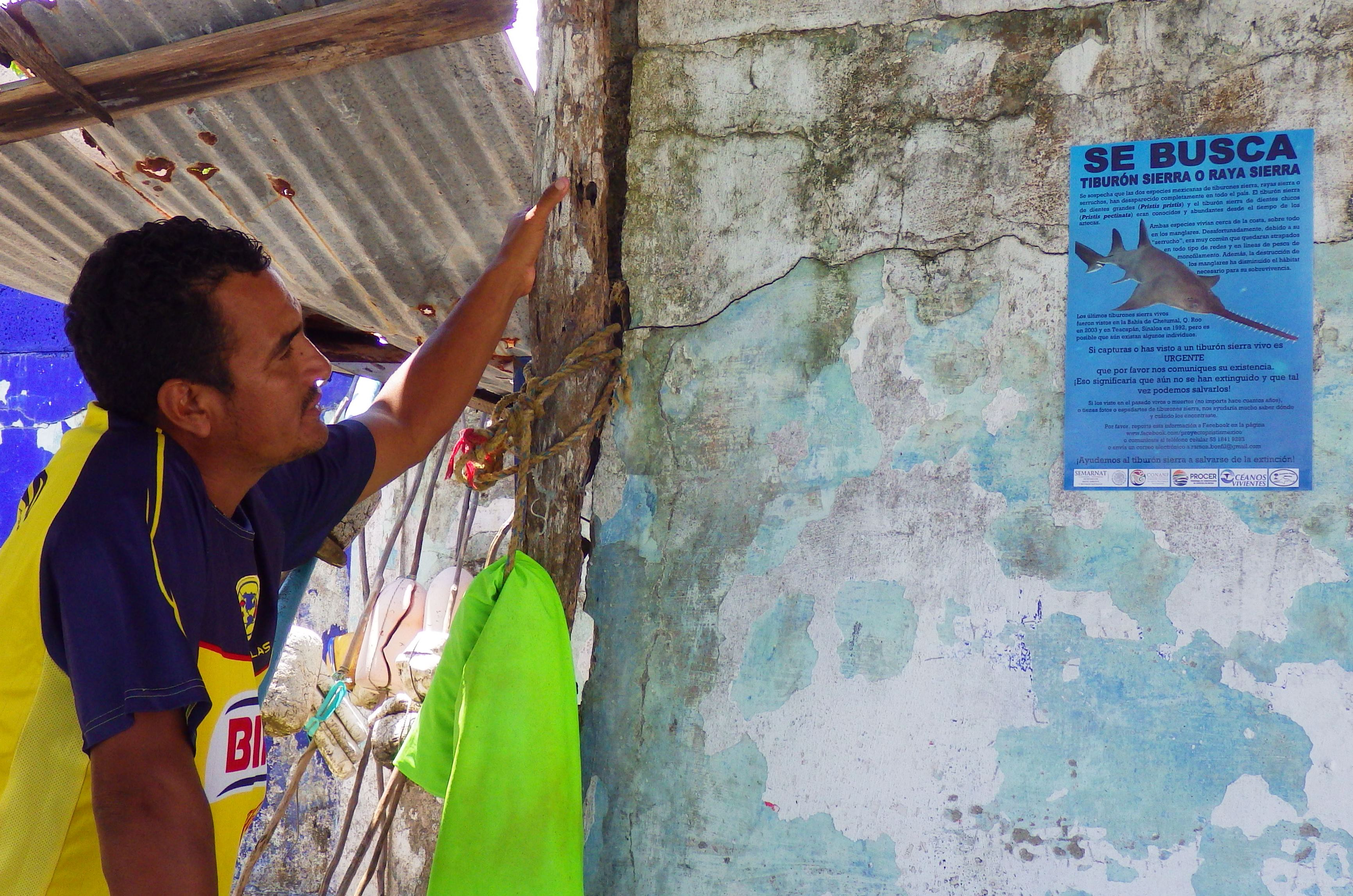 A fisherman reads about sawfish on a poster that Océanos Vivientes distributed throughout the country during its survey.