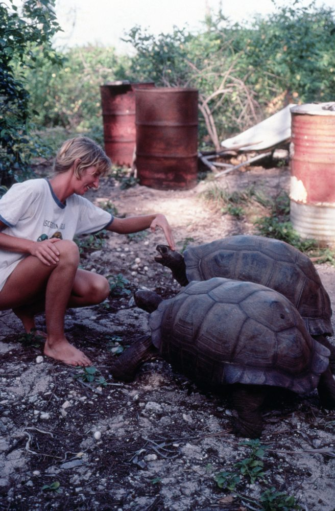 Jeanne with Aldabra giant tortoises. Photo © Jeanne Mortimer