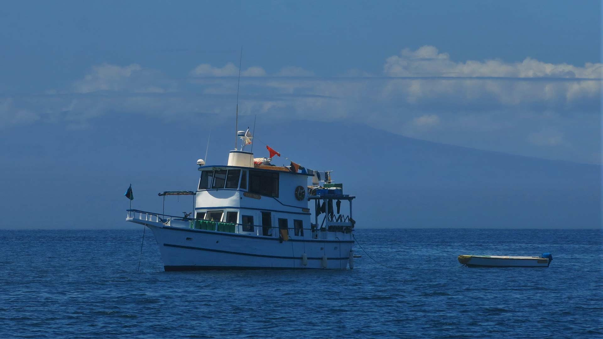 HARVEYeuan - BRUVS in Galapagos
