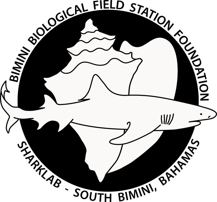 Bimini Biological Field Station Foundation