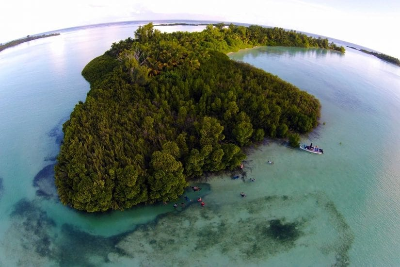 Exploring St Joseph Atoll is like venturing into the Lost World. Photo by Michael Scholl | © Save Our Seas Foundation