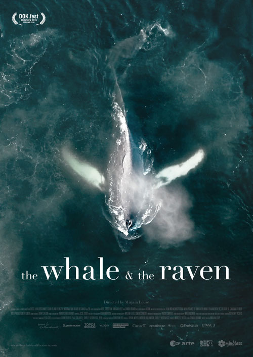 The Whale And The Raven Save Our Seas Foundation
