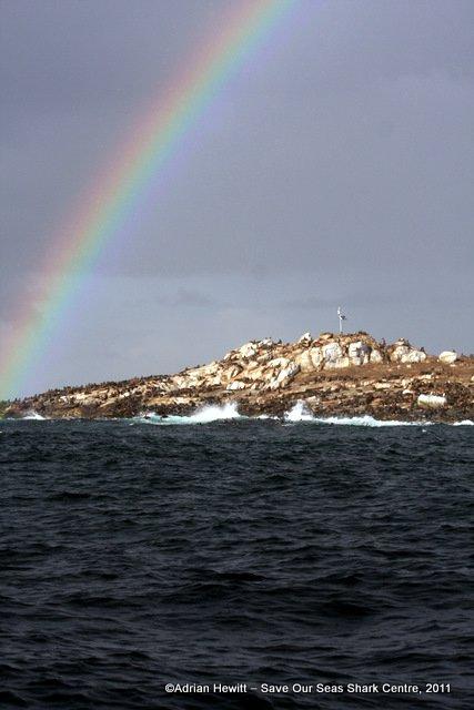 Seal Island SOSSC