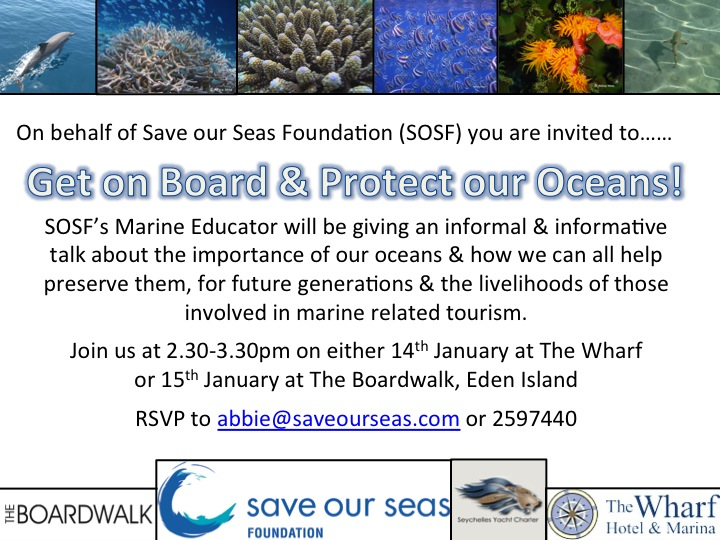 Get on Board and Protect our Oceans © Abbie Hine