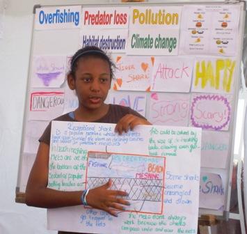 Jaymee's shark presentation