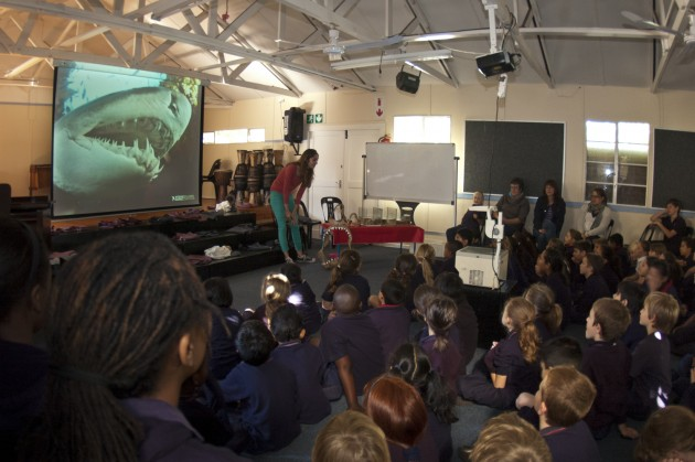 "Learning about how sharks' teeth grow ... and playing ""dentist"" to an inquisitive ragged tooth shark"