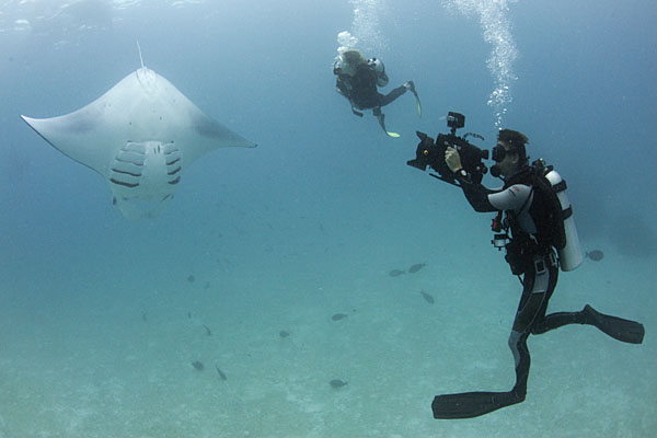 60 Minutes in the Maldives - Day 3 - Manta Mania! | Save Our Seas