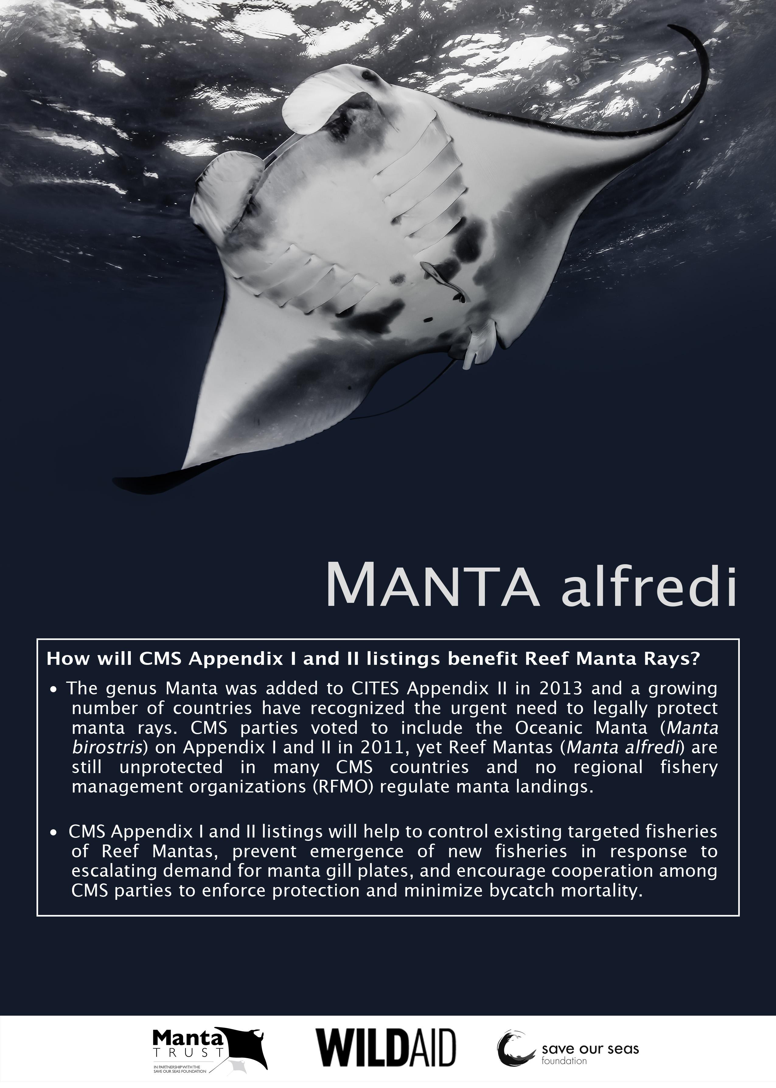 © Manta Trust