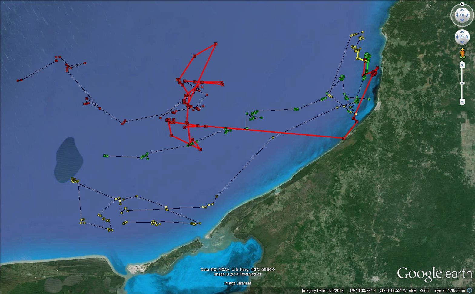 Locations from the SPOT5 tagging of three spotted eagle rays off the coast of Campeche, Mexico on March 8, 2014. Argos locations with a quality rating of 3,2,1,0 and A are shown. Bold lines indicate where the tag was likely still attached on the ray