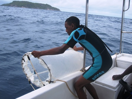ONeal pulling in the plankton net