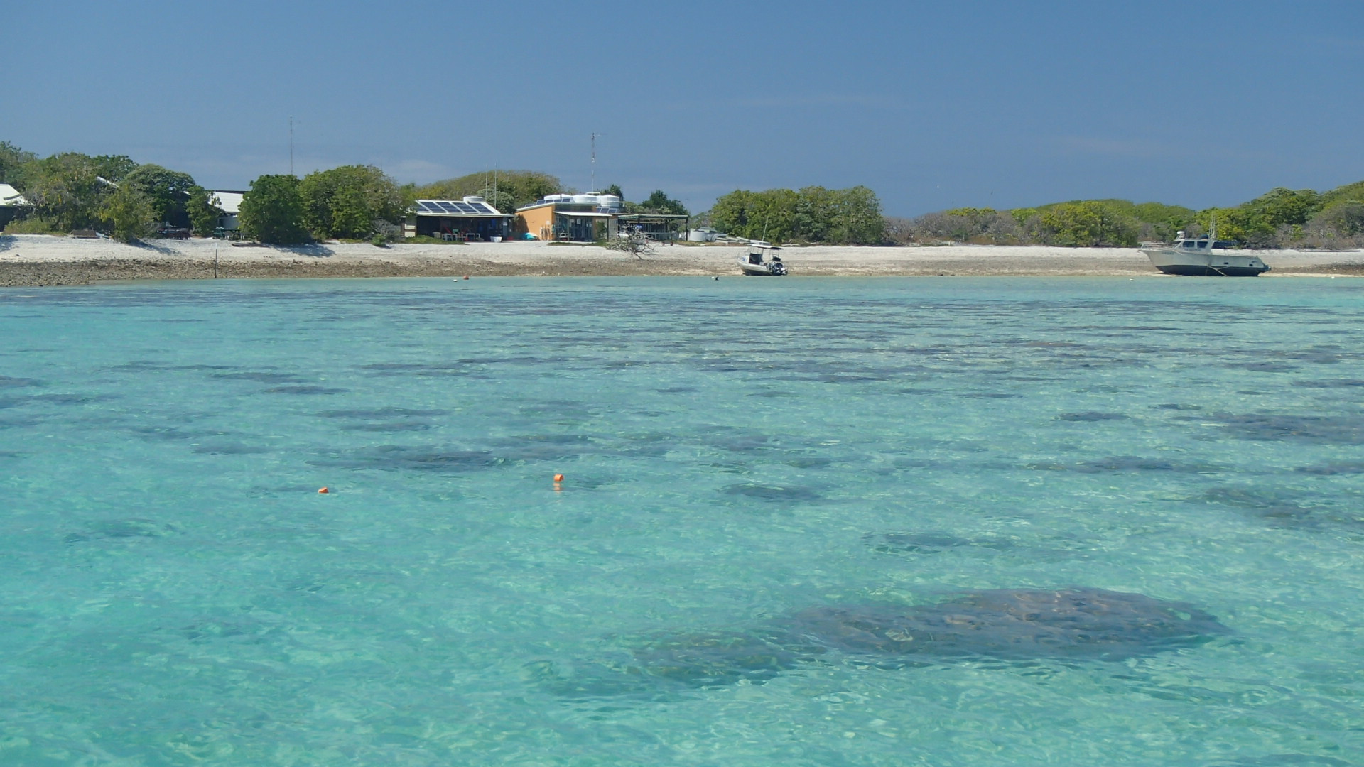 One Tree Island Research Station runs on solar power and rain water. It's 100 kilometres from the coast and is an undisturbed example of a coral reef ecosystem.