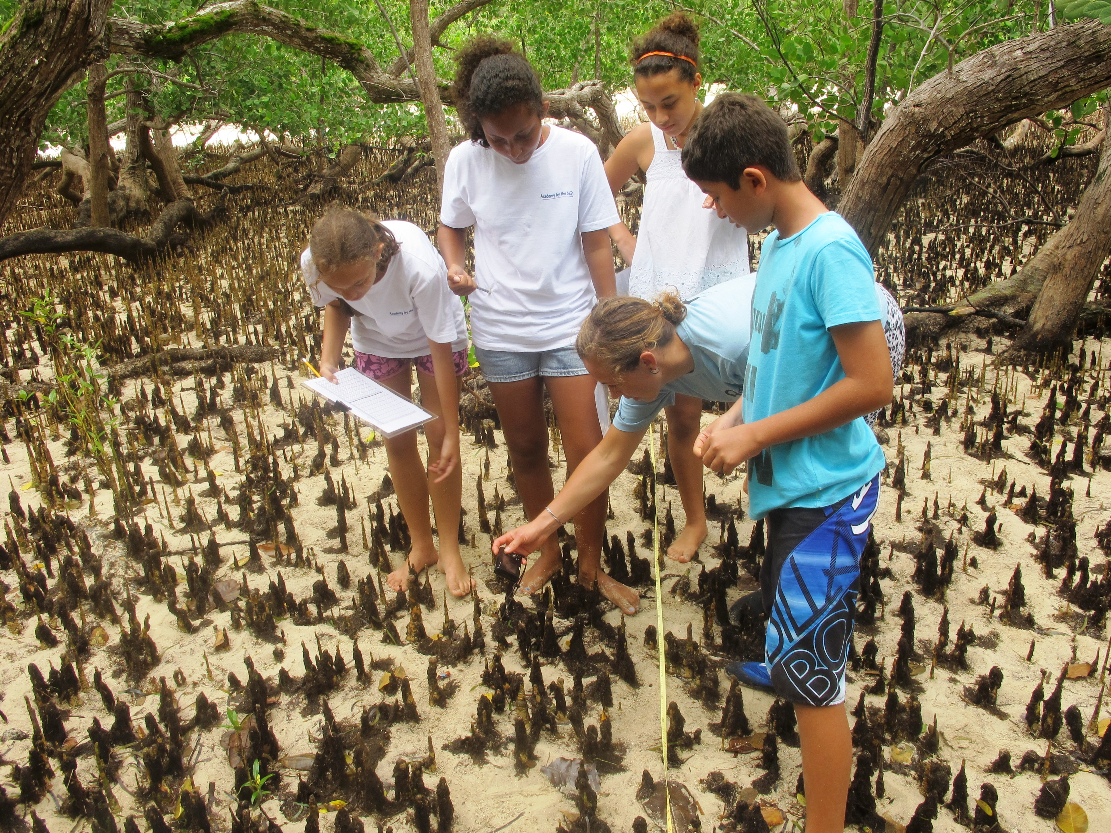 Laura and her fellow students exploring the mangroves with GVI